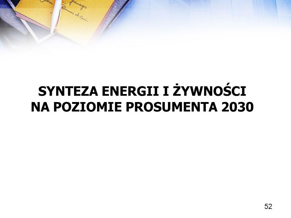 SYNTEZA ENERGII I ŻYWNOŚCI NA POZIOMIE PROSUMENTA 2030