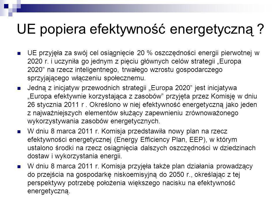 UE popiera efektywność energetyczną