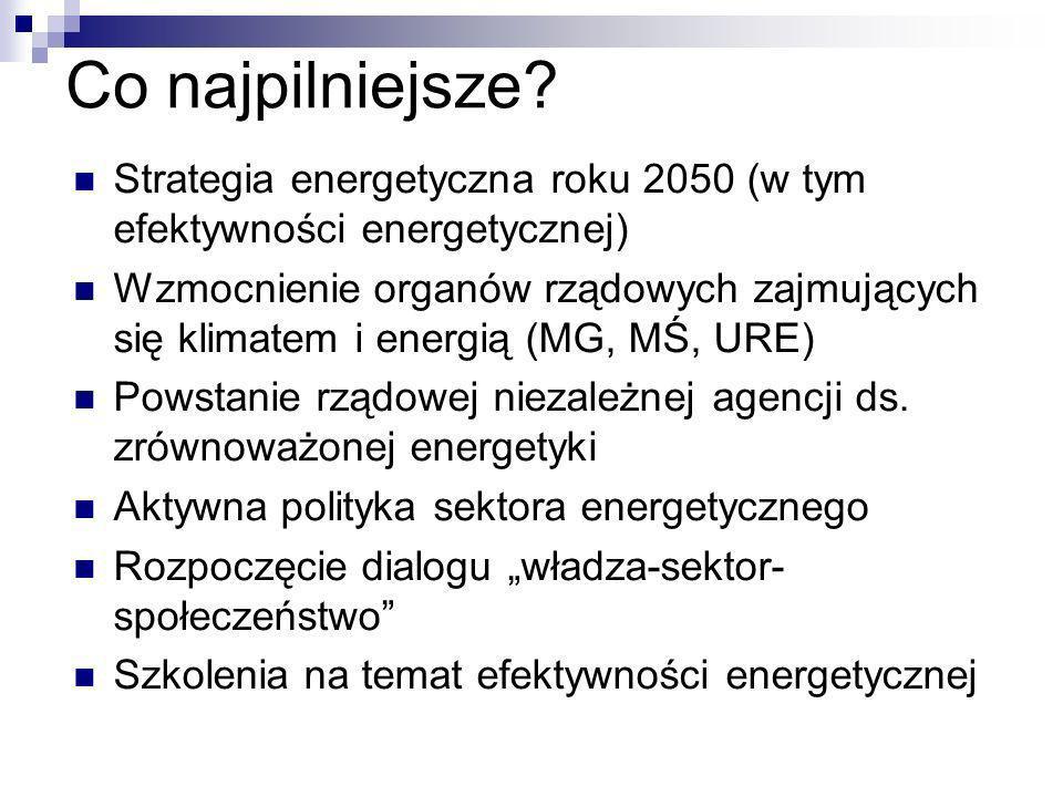 Co najpilniejsze Strategia energetyczna roku 2050 (w tym efektywności energetycznej)