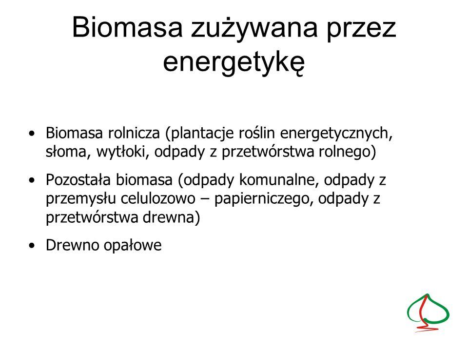Biomasa zużywana przez energetykę