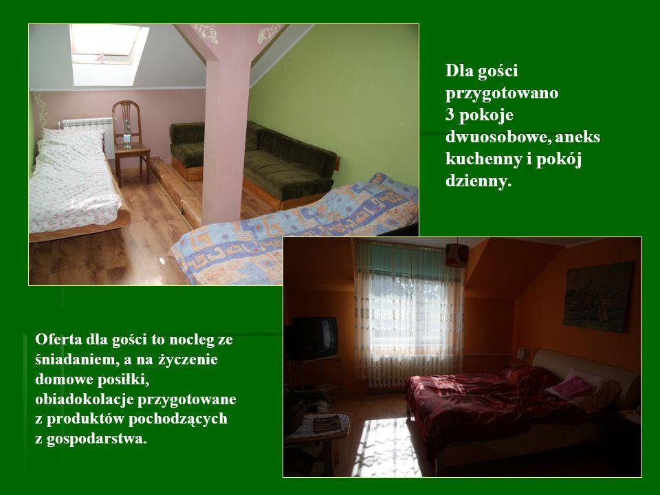 Dla gości przygotowano 3 pokoje dwuosobowe, aneks kuchenny i pokój dzienny.