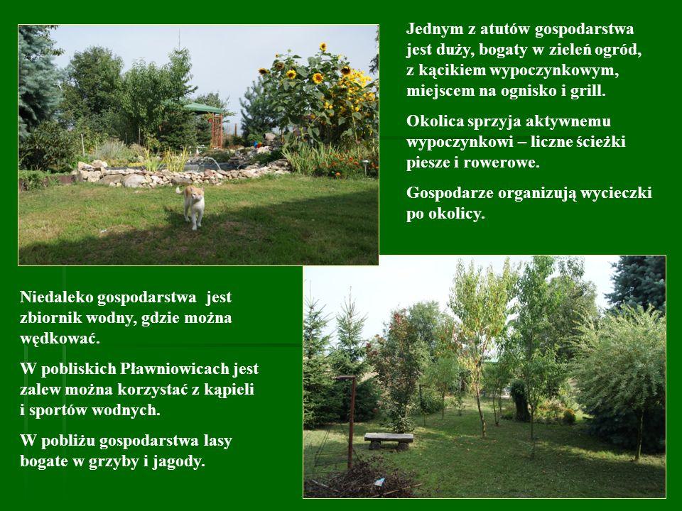 Jednym z atutów gospodarstwa jest duży, bogaty w zieleń ogród, z kącikiem wypoczynkowym, miejscem na ognisko i grill.