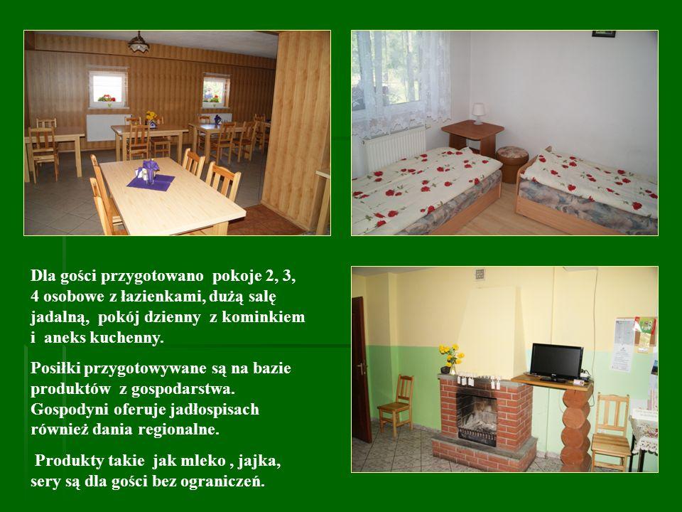 Dla gości przygotowano pokoje 2, 3, 4 osobowe z łazienkami, dużą salę jadalną, pokój dzienny z kominkiem i aneks kuchenny.