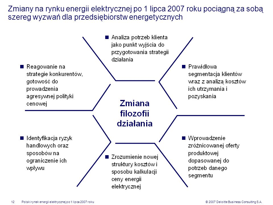 Zmiany na rynku energii elektrycznej po 1 lipca 2007 roku pociągną za sobą szereg wyzwań dla przedsiębiorstw energetycznych