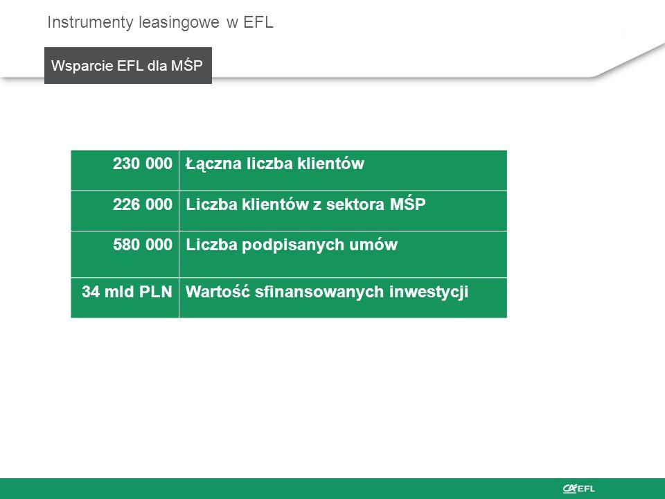 Instrumenty leasingowe w EFL