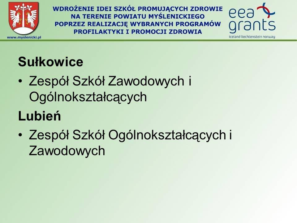 Sułkowice Zespół Szkół Zawodowych i Ogólnokształcących.