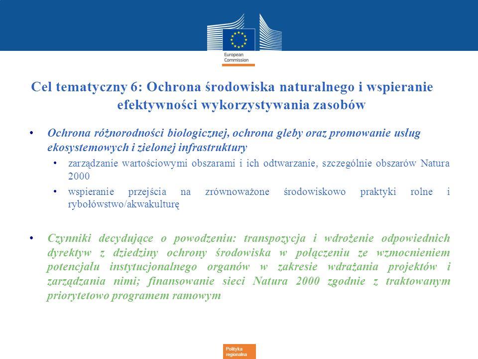 Cel tematyczny 6: Ochrona środowiska naturalnego i wspieranie efektywności wykorzystywania zasobów