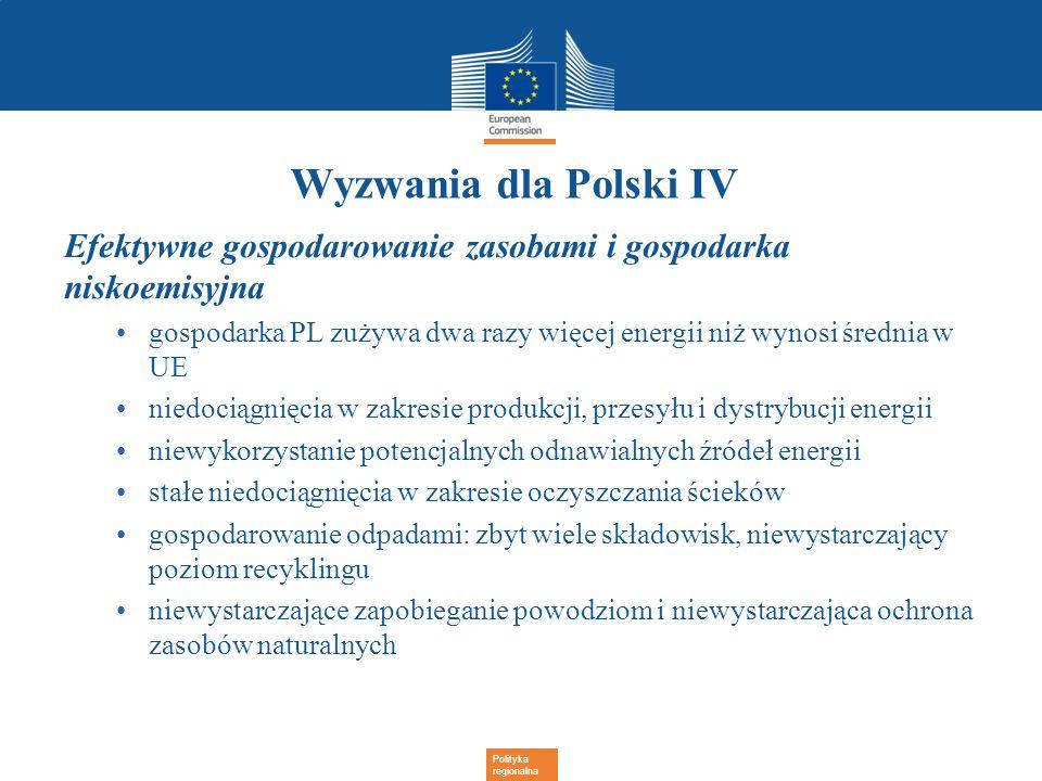 Wyzwania dla Polski IV Efektywne gospodarowanie zasobami i gospodarka niskoemisyjna.