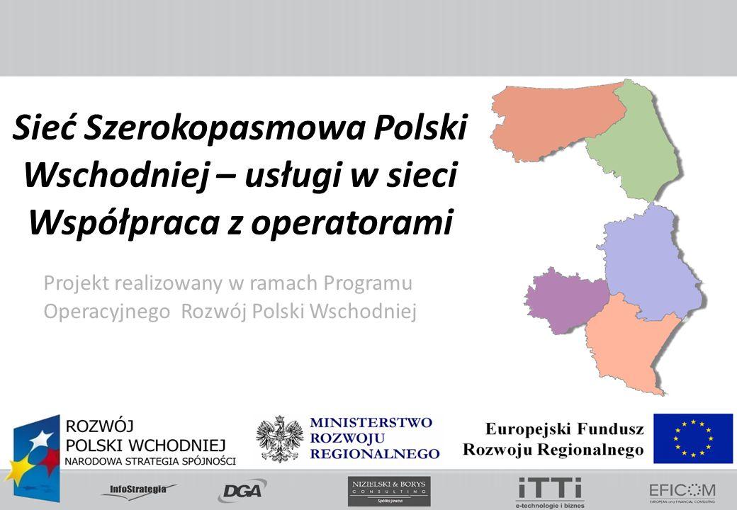 Sieć Szerokopasmowa Polski Wschodniej – usługi w sieci