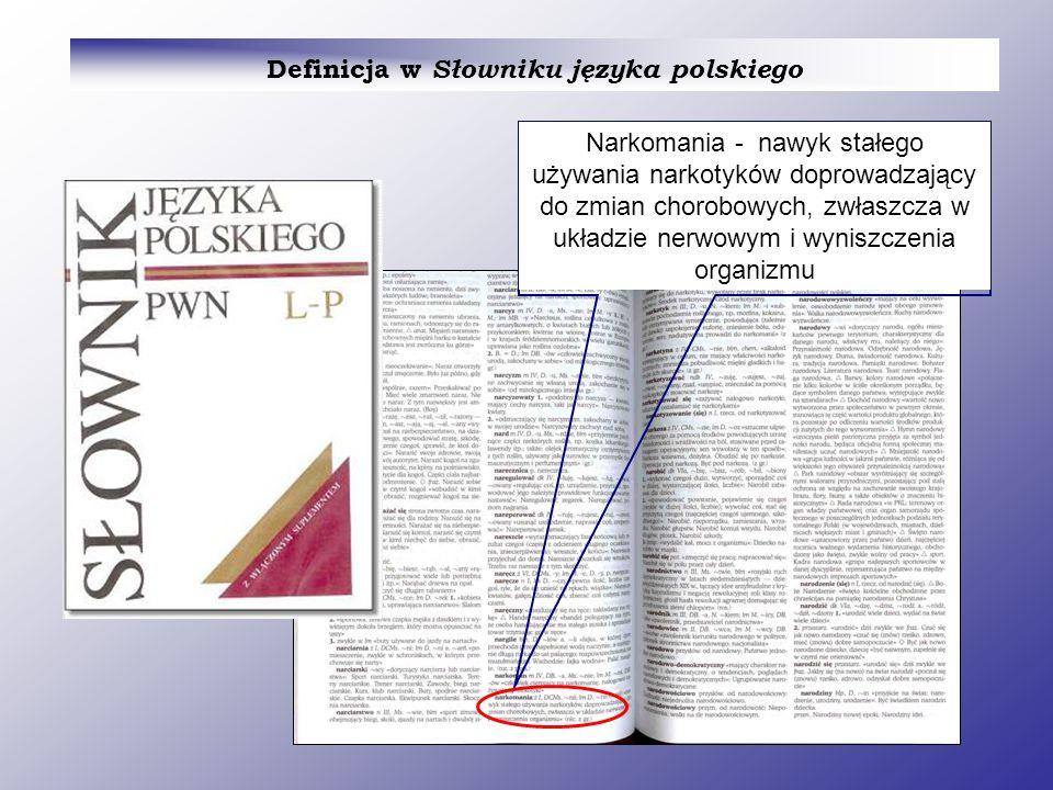 Definicja w Słowniku języka polskiego