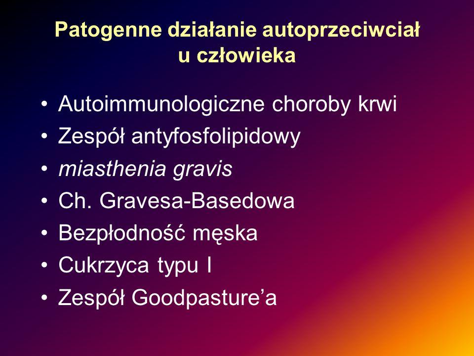 Patogenne działanie autoprzeciwciał u człowieka