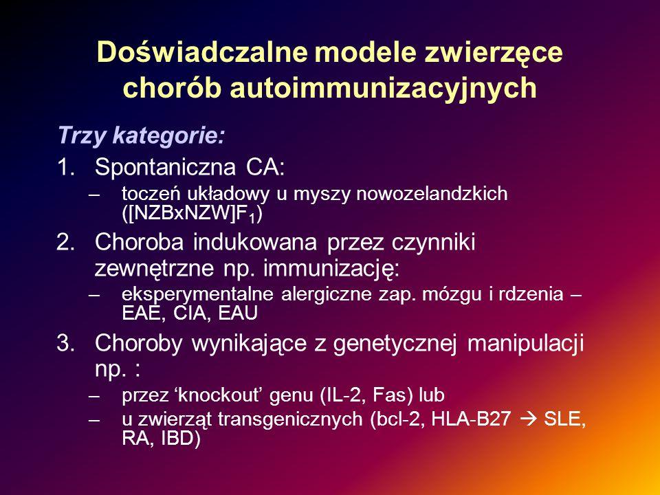 Doświadczalne modele zwierzęce chorób autoimmunizacyjnych