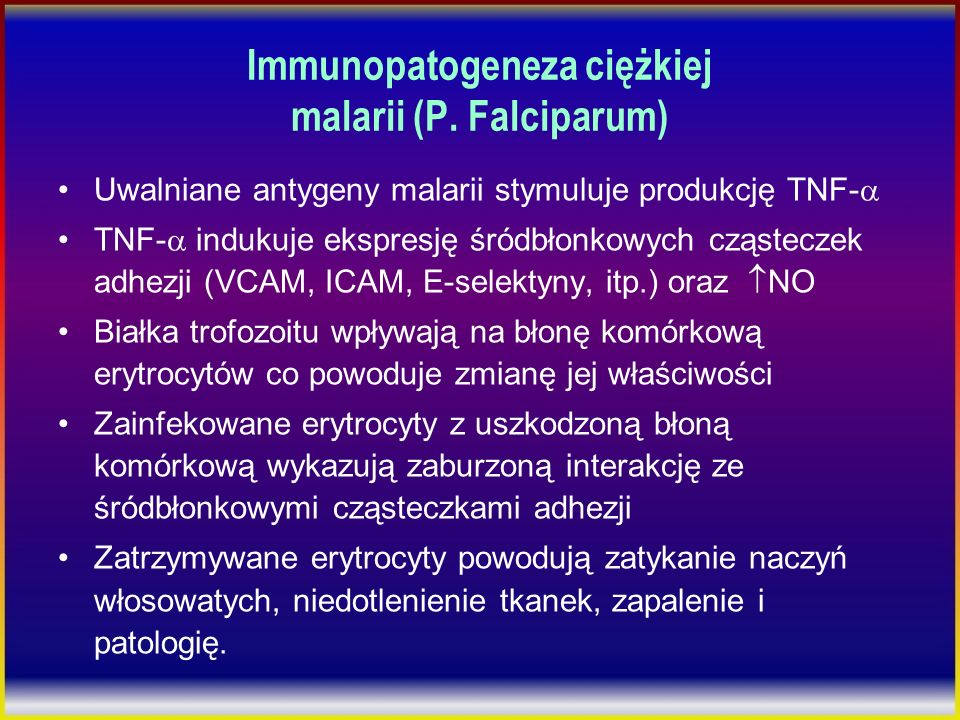 Immunopatogeneza ciężkiej malarii (P. Falciparum)