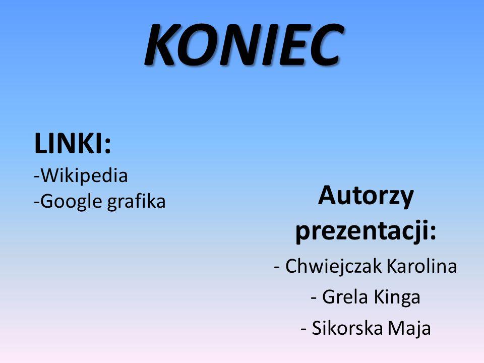 KONIEC LINKI: Autorzy prezentacji: Wikipedia Google grafika