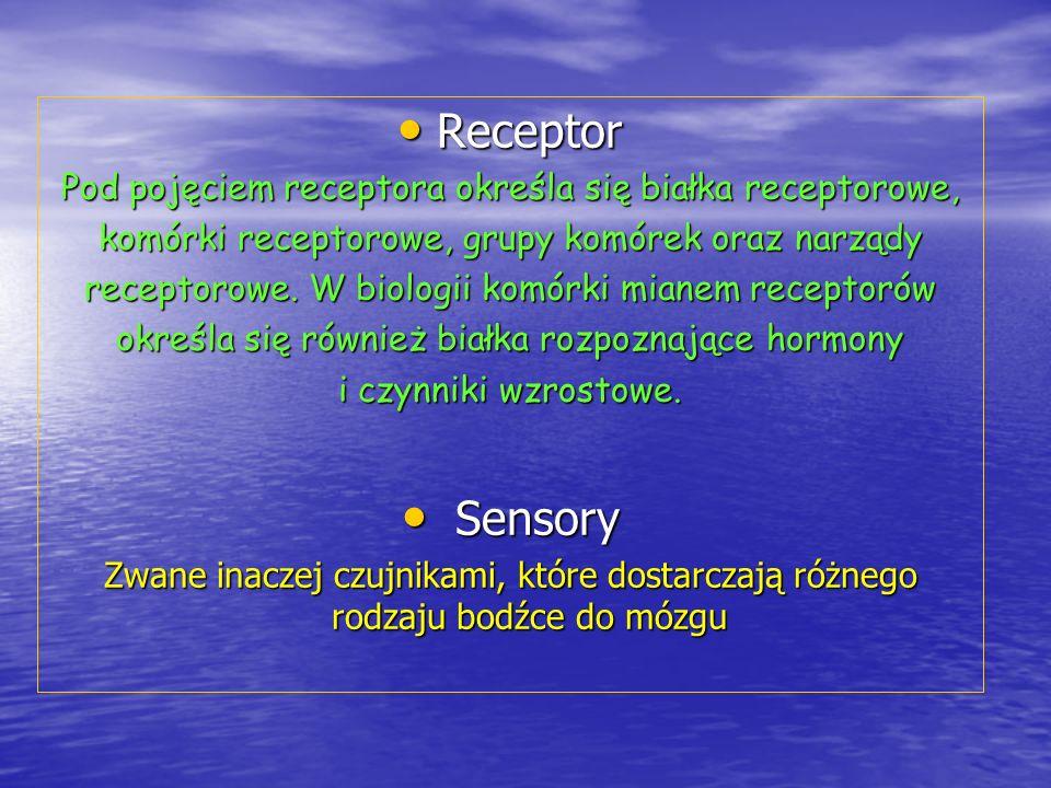 Receptor Pod pojęciem receptora określa się białka receptorowe, komórki receptorowe, grupy komórek oraz narządy.
