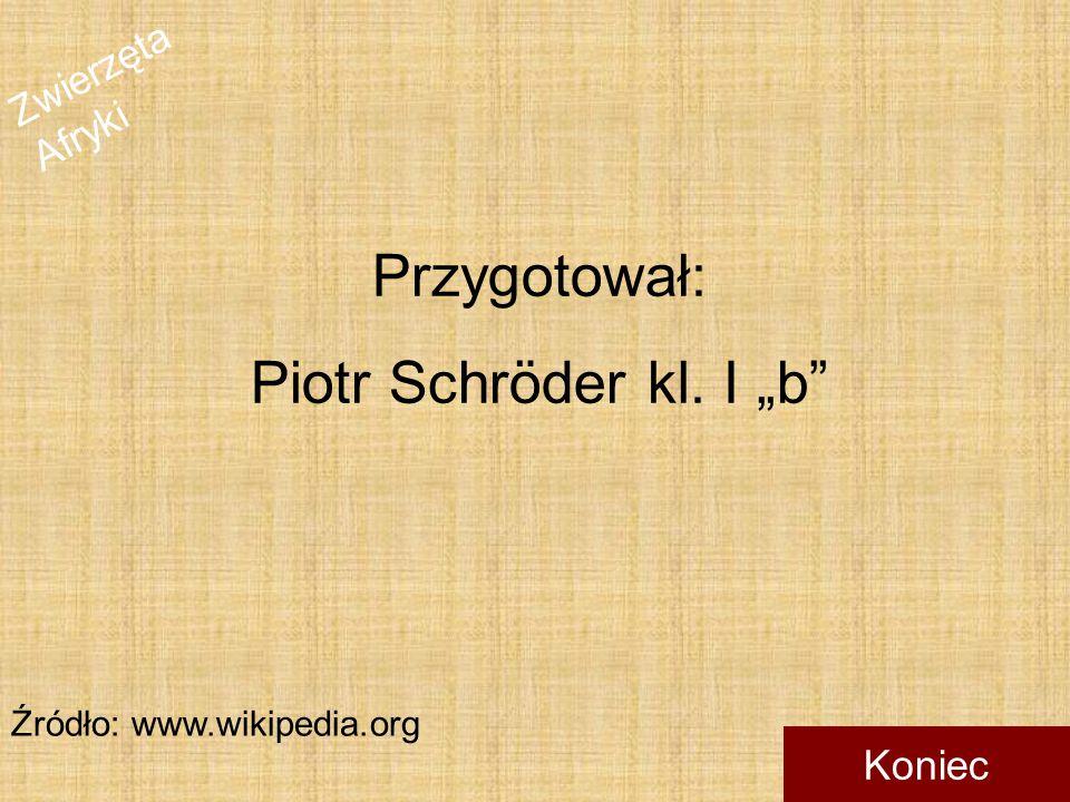 """Przygotował: Piotr Schröder kl. I """"b Źródło: www.wikipedia.org Koniec"""