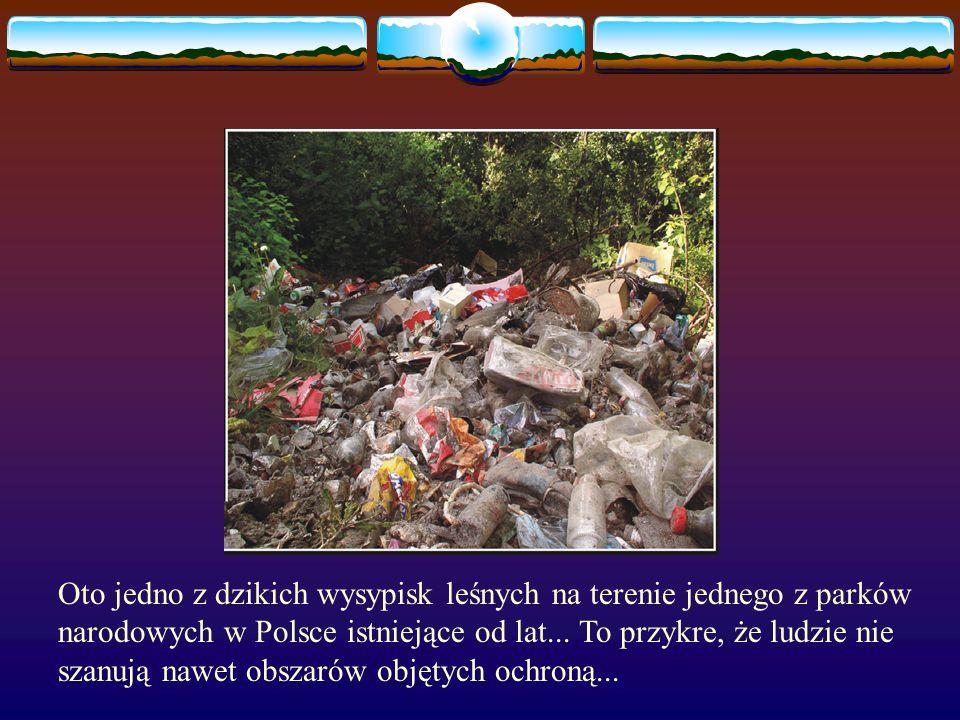 Oto jedno z dzikich wysypisk leśnych na terenie jednego z parków narodowych w Polsce istniejące od lat...