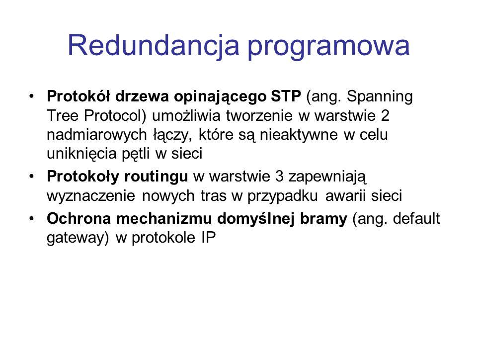 Redundancja programowa