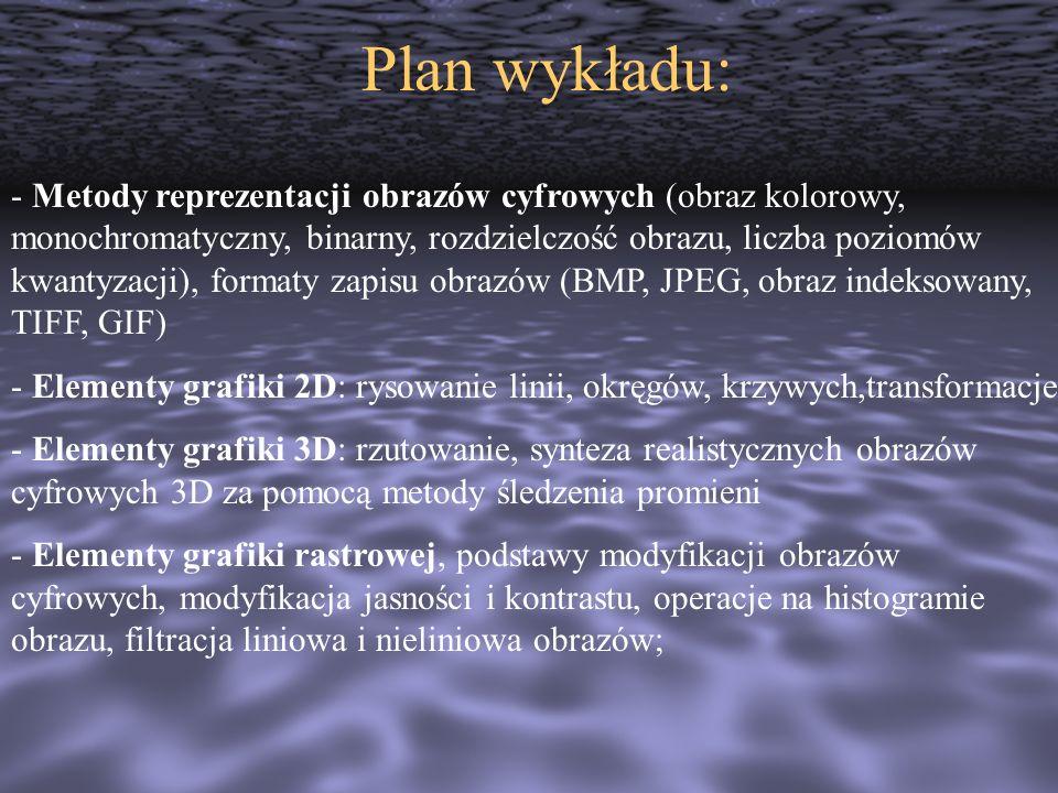 Plan wykładu: