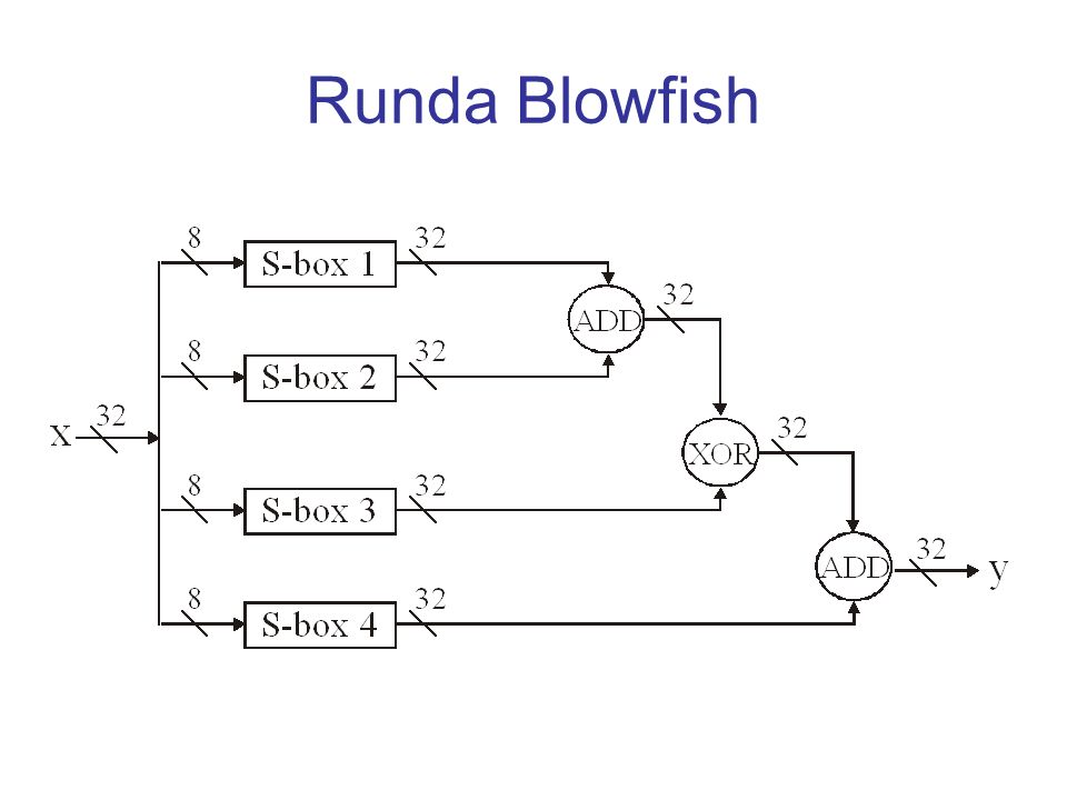 Runda Blowfish