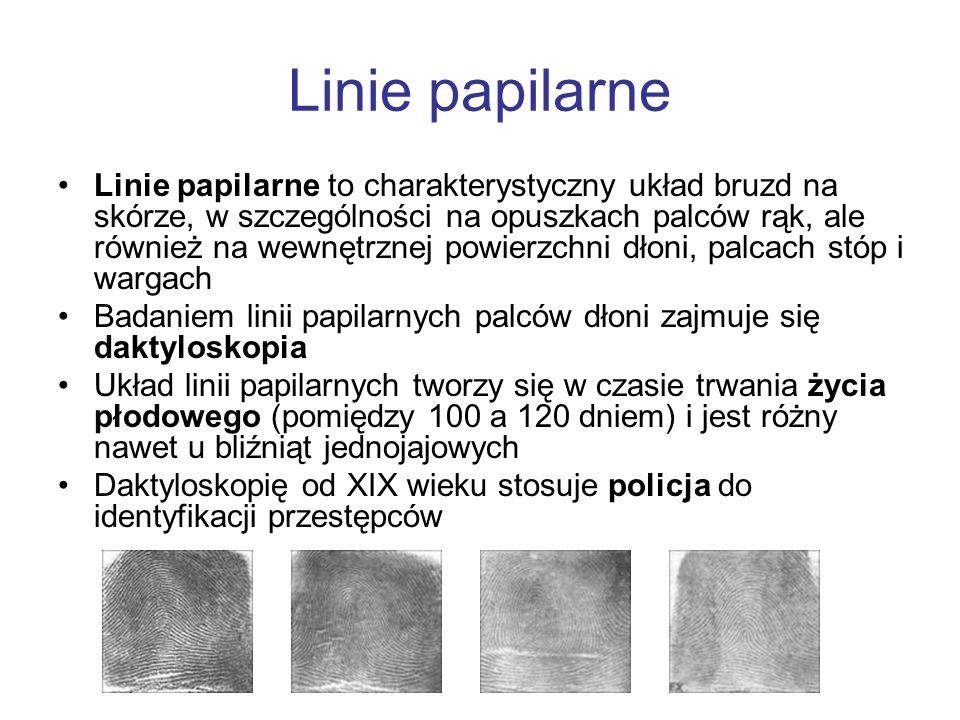 Linie papilarne