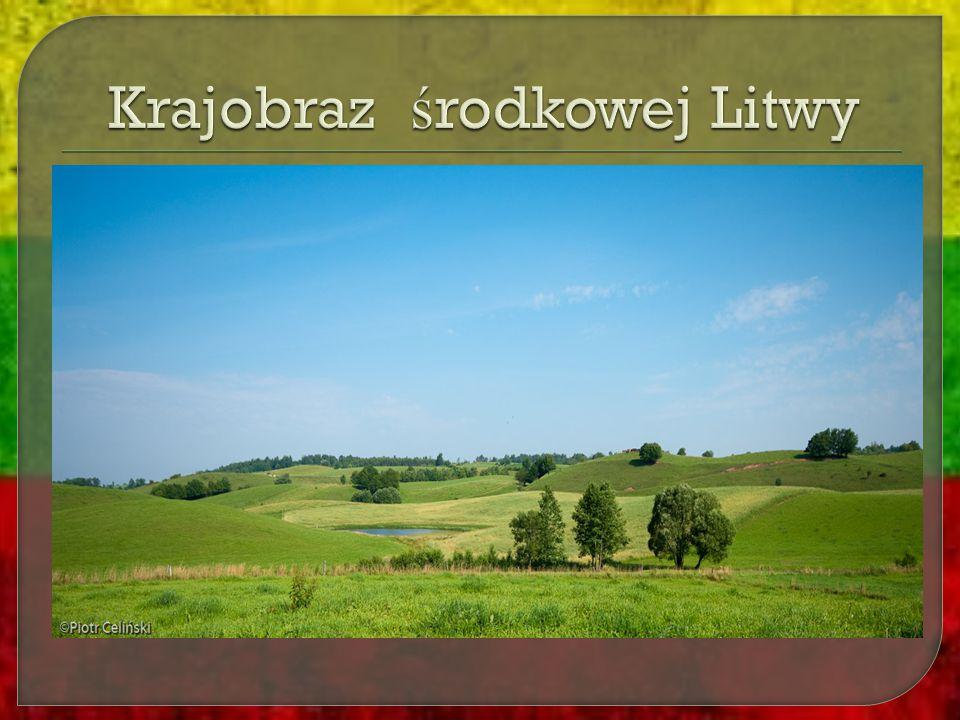 Krajobraz środkowej Litwy