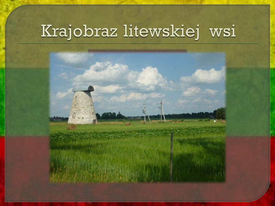 Krajobraz litewskiej wsi