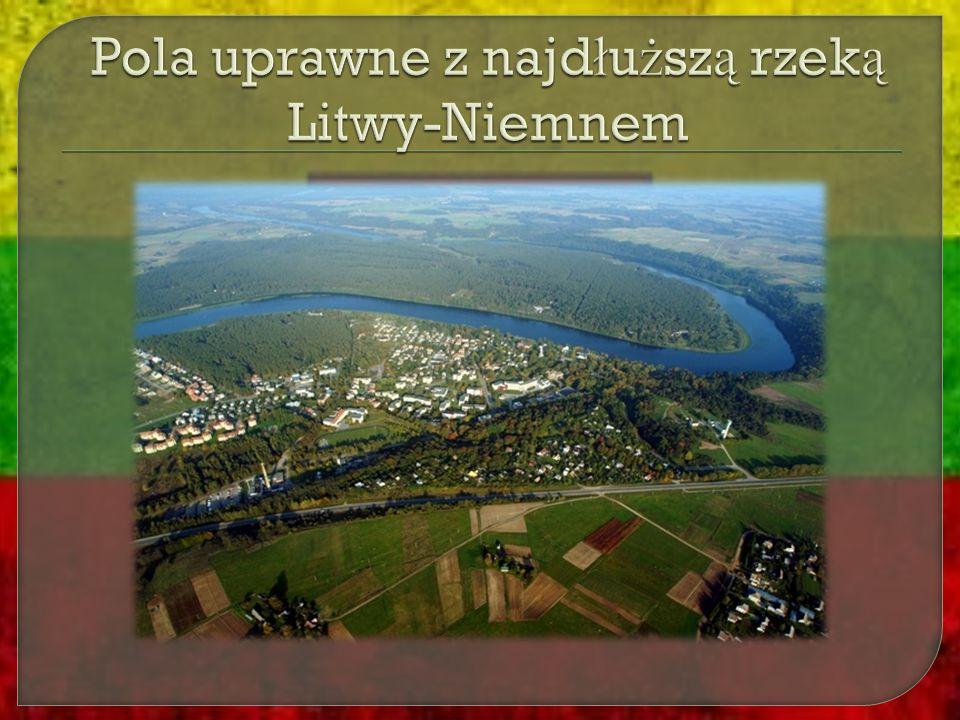 Pola uprawne z najdłuższą rzeką Litwy-Niemnem