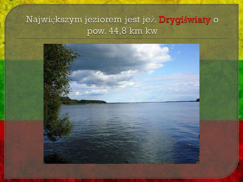 Największym jeziorem jest jeź. Drygiświaty o pow. 44,8 km kw