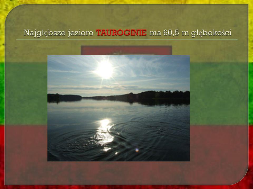 Najgłębsze jezioro TAUROGINIE ma 60,5 m głębokości