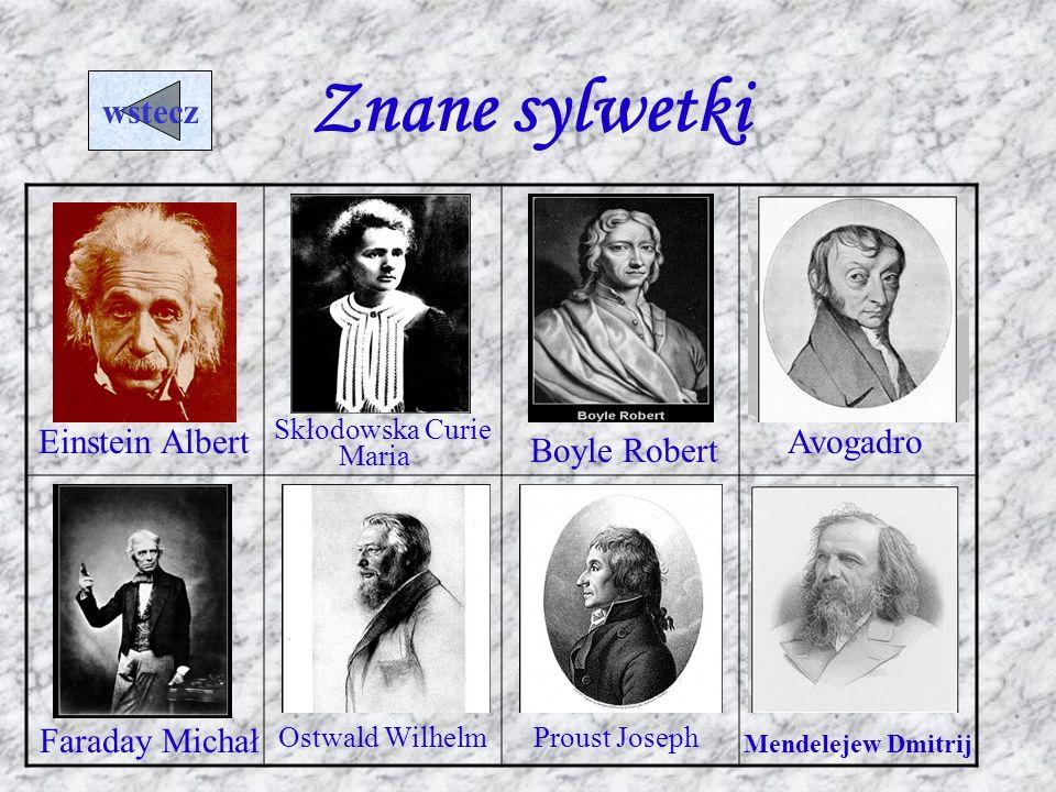 Znane sylwetki wstecz Einstein Albert Avogadro Boyle Robert