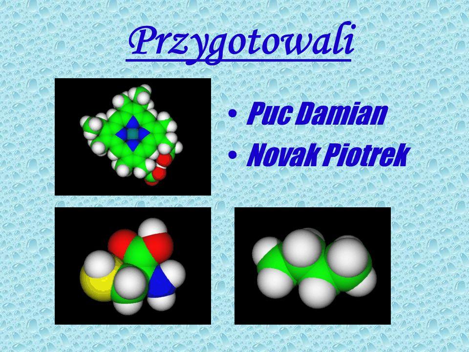 Przygotowali Puc Damian Novak Piotrek