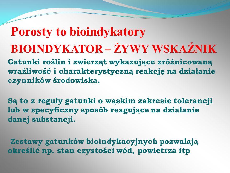 Porosty to bioindykatory