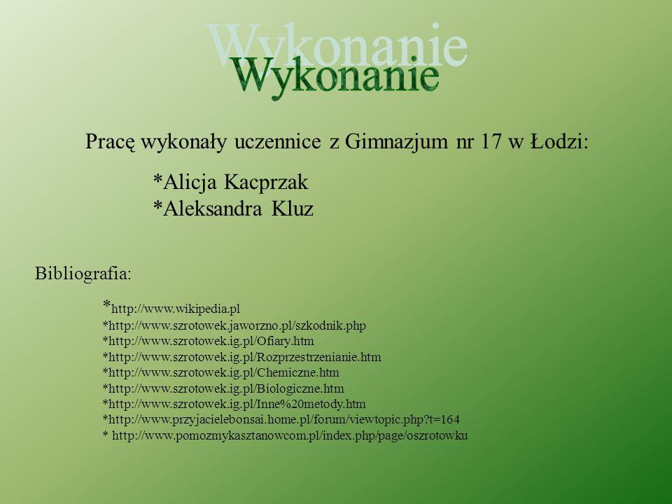 Wykonanie Pracę wykonały uczennice z Gimnazjum nr 17 w Łodzi: