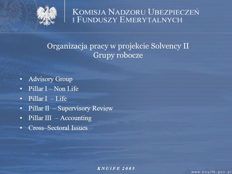 Organizacja pracy w projekcie Solvency II Grupy robocze