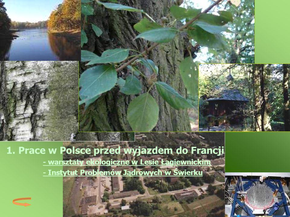 1. Prace w Polsce przed wyjazdem do Francji