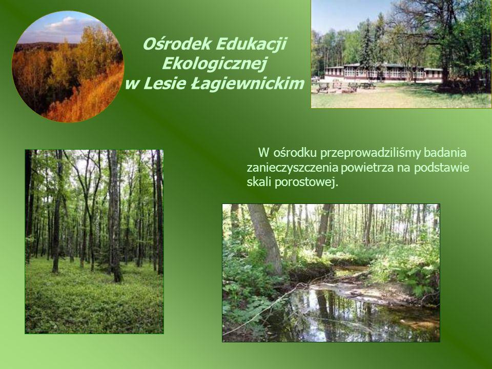 Ośrodek Edukacji Ekologicznej w Lesie Łagiewnickim