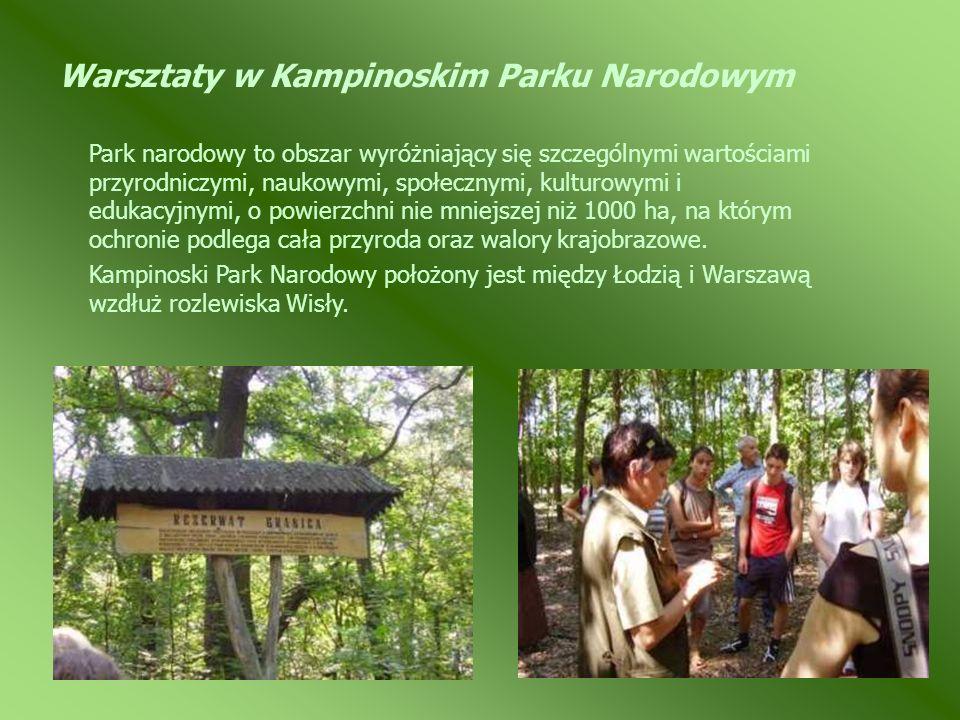 Warsztaty w Kampinoskim Parku Narodowym