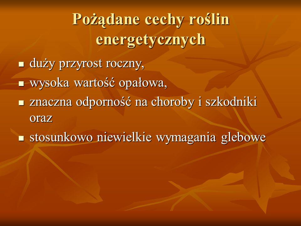 Pożądane cechy roślin energetycznych