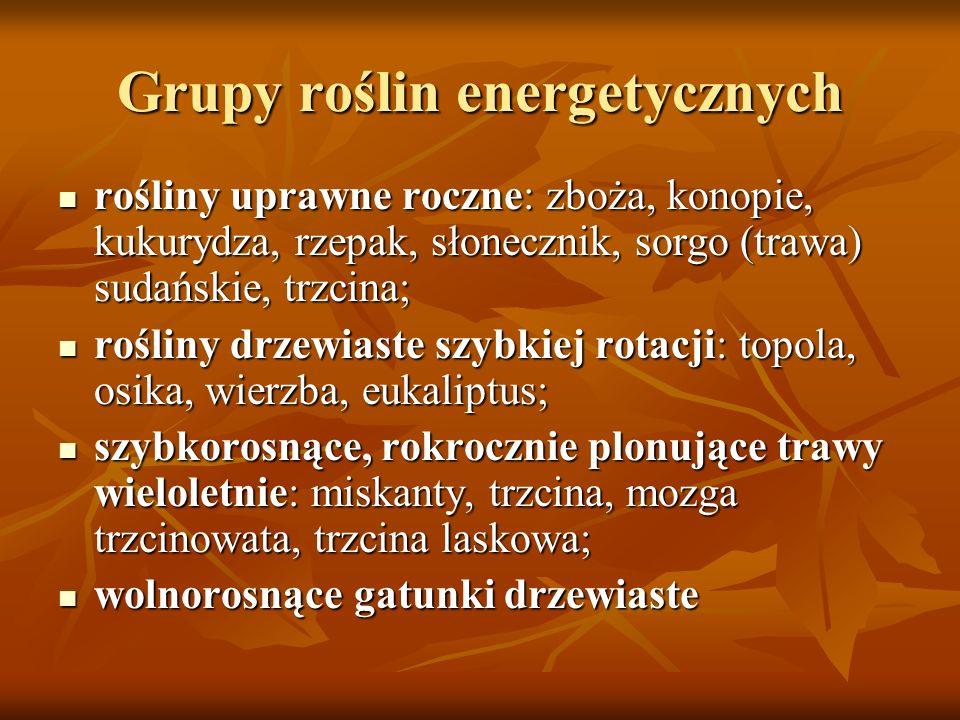 Grupy roślin energetycznych