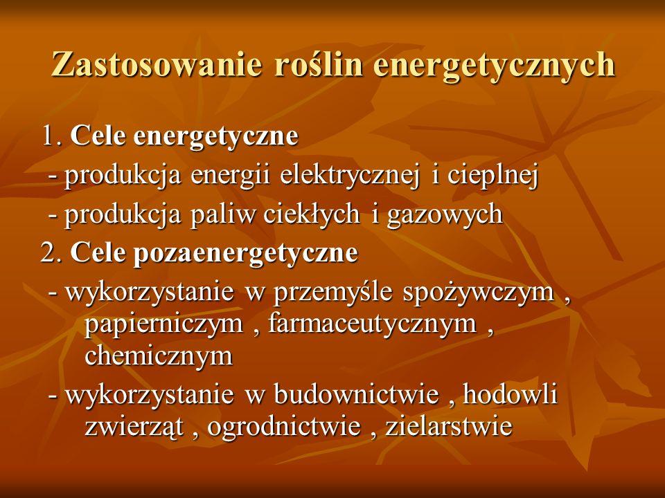 Zastosowanie roślin energetycznych