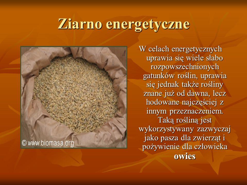 Ziarno energetyczne