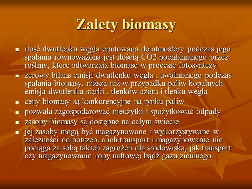 Zalety biomasy