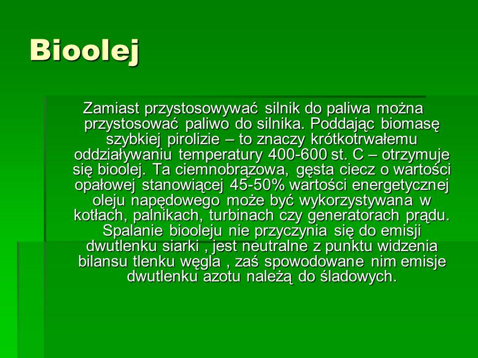 Bioolej