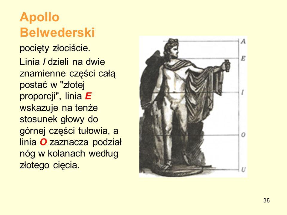 Apollo Belwederski pocięty złociście.