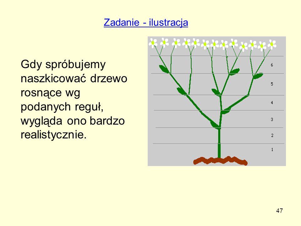 Zadanie - ilustracja Gdy spróbujemy naszkicować drzewo rosnące wg podanych reguł, wygląda ono bardzo realistycznie.