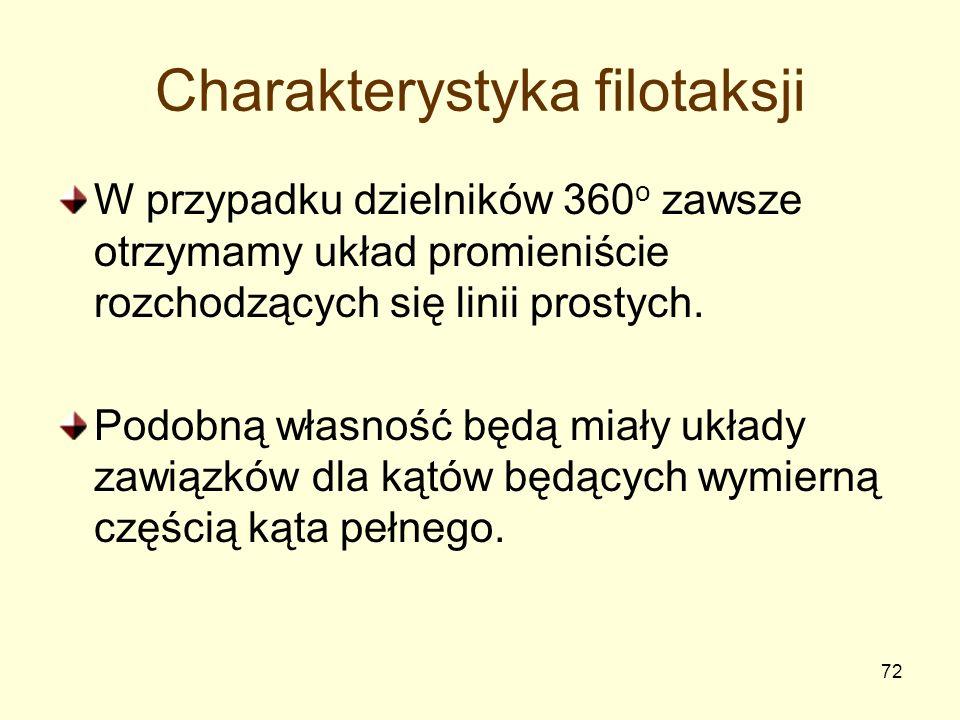 Charakterystyka filotaksji
