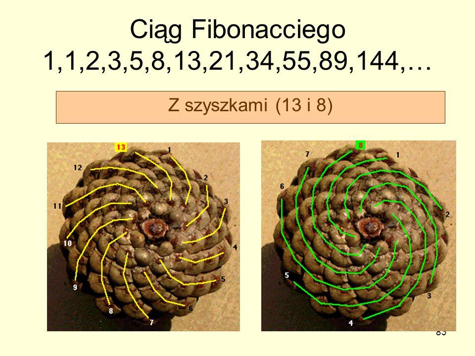 Ciąg Fibonacciego 1,1,2,3,5,8,13,21,34,55,89,144,… Z szyszkami (13 i 8)
