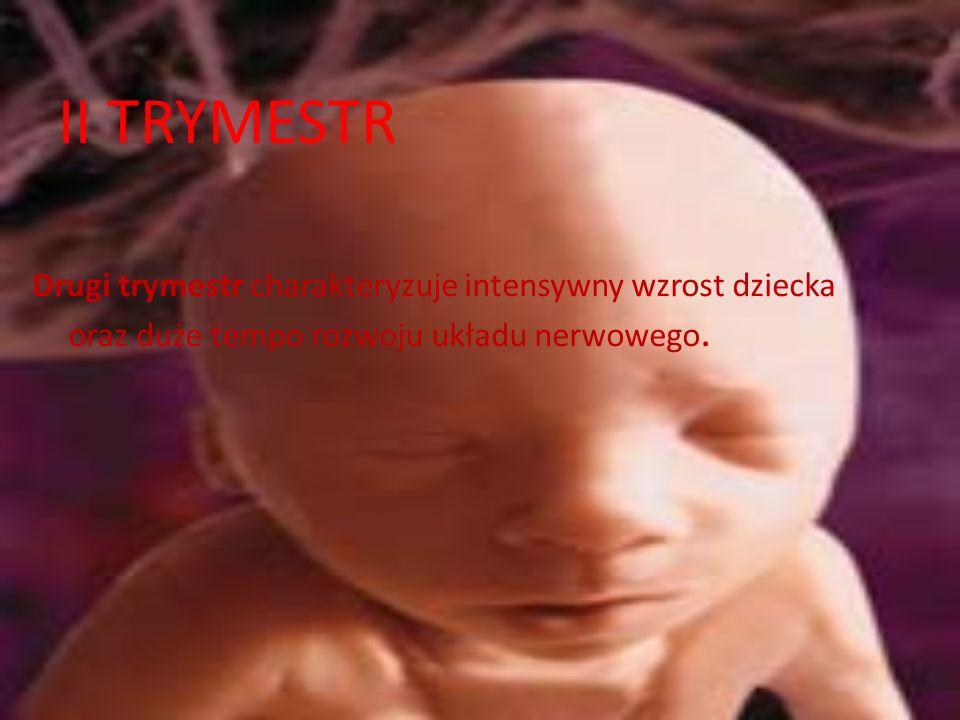 II TRYMESTR Drugi trymestr charakteryzuje intensywny wzrost dziecka oraz duże tempo rozwoju układu nerwowego.
