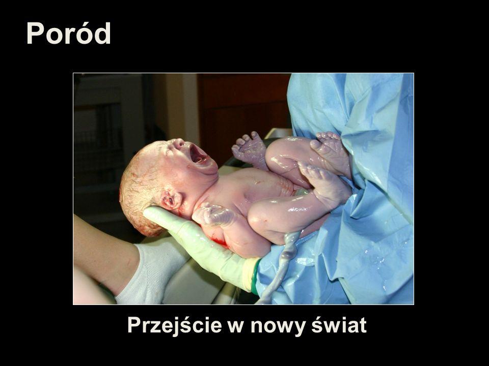 Poród Przejście w nowy świat